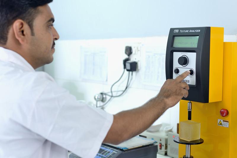 Cassia Gum gel strength testing using a LFRA Texture Analyzer